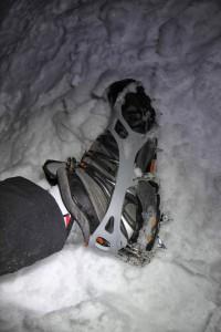 Steigeisen, Grödl, Schneeketten – es wurde aufgerüstet!