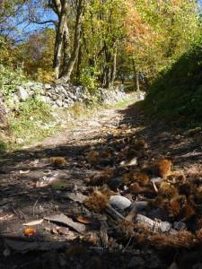 """Der """"Keschtnweg"""" in Südtirol (Kastanienweg)"""