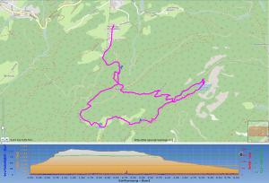 Höhenprofil und Streckenkarte